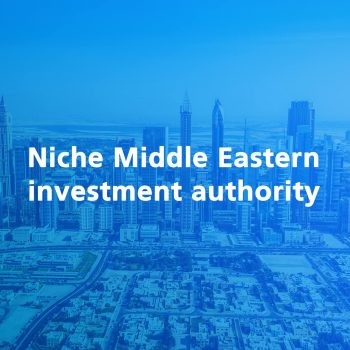niche-middle-eastern-investment-authority3